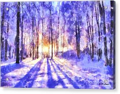 Beautiful Winter Morning Acrylic Print by Elizabeth Coats