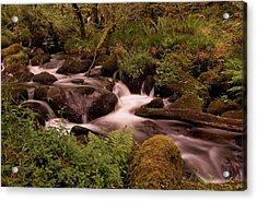 Becky Falls On Dartmoor's National Park Acrylic Print by Jay Lethbridge
