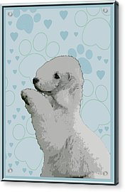 Bedlington Terrier Acrylic Print by One Rude Dawg Orcutt