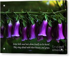 Bells Of Spring Acrylic Print by Olahs Photography