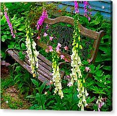Bench Among The Foxgloves Acrylic Print by Julie Dant