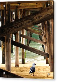 Beneath The Pier Acrylic Print by Diane Wood