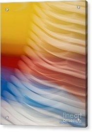 Beyond Limits Acrylic Print by Barbara McMahon