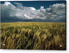 Billowy Clouds Form Over A Wind-swept Acrylic Print by Medford Taylor