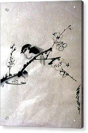 Bird In Plumtree Acrylic Print by Sid Solomon