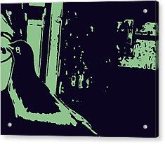 Bird Love Acrylic Print by YoMamaBird Rhonda