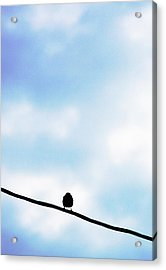 Bird  On A Wire Acrylic Print by Ed Bricker