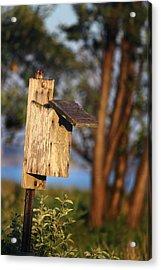 Birdhouse 23 Acrylic Print by Andrew Pacheco
