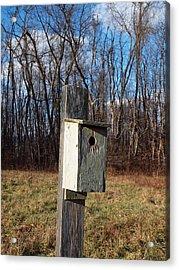 Birdhouse On A Pole Acrylic Print by Robert Margetts