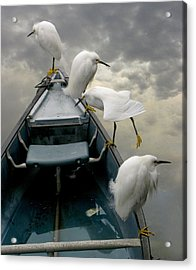 Birds Boat And Beyond Acrylic Print by Henry Murray