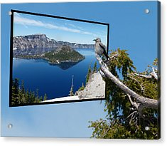 Birds Eye View Of Crater Lake Acrylic Print by Cindy Wright