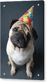 Birthday Boy Acrylic Print by Snake Jagger