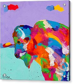 Bison Ablaze Acrylic Print by Tracy Miller