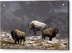 Bison King Acrylic Print by Daniel Eskridge