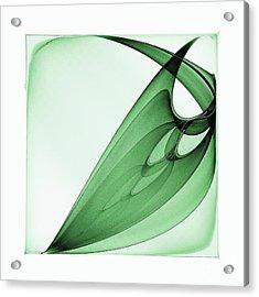 Bizarre Leaf Acrylic Print by Klara Acel