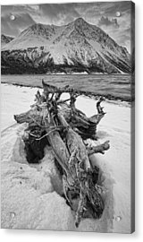 Black And White Version Of Kathleen Acrylic Print by Robert Postma