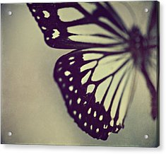 Black And White Wings Acrylic Print by Amelia Kay Photography