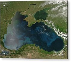 Black Sea Phytoplankton Acrylic Print by Nasa