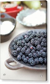 Blackberries Acrylic Print by AE Pictures Inc.