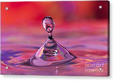 Bloop Acrylic Print by Darren Fisher
