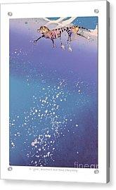 Blue Bayou Acrylic Print by Diana  Tyson