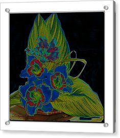 Blue Floral  Acrylic Print by Diana  Tyson