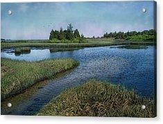 Blue Lagoon Acrylic Print by Robin-lee Vieira