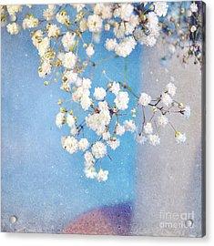 Blue Morning Acrylic Print by Lyn Randle