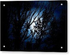 Blue Night Acrylic Print by Kevin Bone