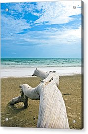 Blue Sea And Sky With Log On The Beach Acrylic Print by Nawarat Namphon