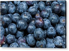 Blueberries Acrylic Print by Michael Waters