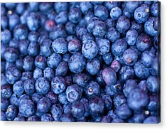 Blueberries Acrylic Print by Tanya Harrison