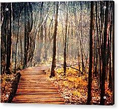 Boardwalk Acrylic Print by Jai Johnson