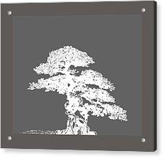 Bonsai I Acrylic Print by Ann Powell