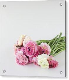 Bouquet Of Ranunculus Acrylic Print by Elin Enger