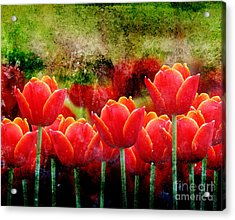 Bright Red Textured Tulip Flower Acrylic Print by Angela Waye