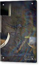 Broken Head Cross Acrylic Print by Susan Isakson