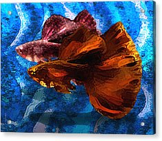 Brown Fish In Abstract Art Acrylic Print by Mario Perez