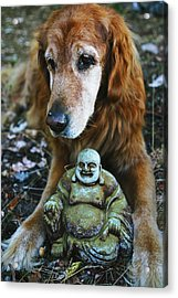 Buddha And The Old Boy Acrylic Print by Lorraine Devon Wilke