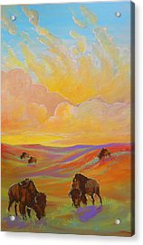 Buffalo Sunrise Acrylic Print by Jenn Cunningham