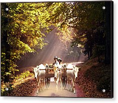 Bulls Ride Acrylic Print by E  Kraizberg