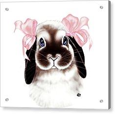 Bunny Acrylic Print by Elaine VanWinkle