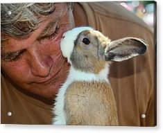 Bunny Kisses Acrylic Print by Theresa Johnson