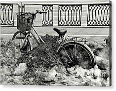 Buried In The Snow Acrylic Print by Dean Harte