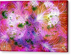 Cabbage Moon Acrylic Print by Judi Bagwell