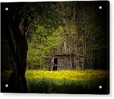 Cabin In The Flowers Acrylic Print by Joyce Kimble Smith