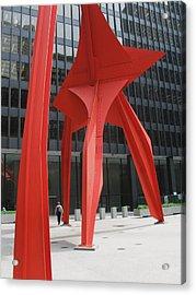 Calder-3 Acrylic Print by Todd Sherlock