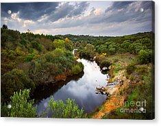 Calm River Acrylic Print by Carlos Caetano