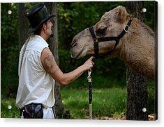 Camel Keeper Acrylic Print by Eamon Forslund