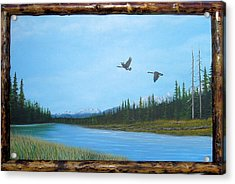 Canadian Geese On The Kootenay Acrylic Print by William Flexhaugh
